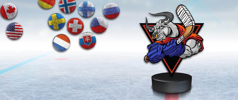 hockey camp, hockey camp ICE BULLS, hockey camp in Czech, czech hockey camp, junior hockey camp, summer hockey camp